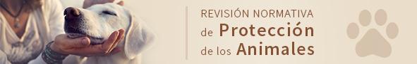 Banner_consulta_animales_591x92