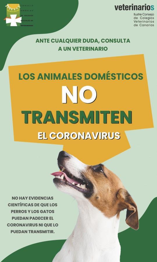 cartel mascotas coronavirus