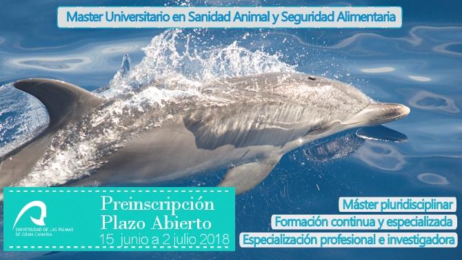 delfin-preinscripcin